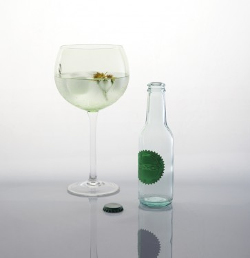 Botella Gin Tonic