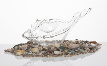 Cañaílla de cristal