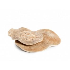 Carpaccio Wood Plate XS (3 unidades)