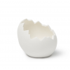 Huevo Roto Triásico (caja 6 unds)
